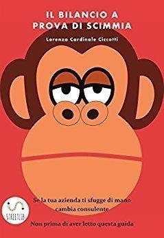come si legge un bilancio a prova di scimmia